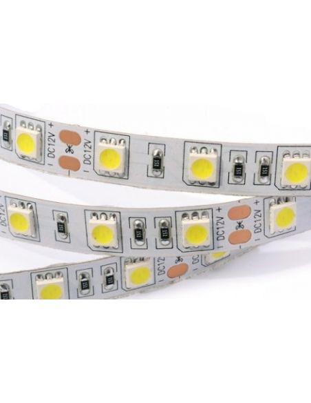 Лента LED 5050 холодный белый (неизол.) 14,4Вт./м.п. 60LED/м.п.