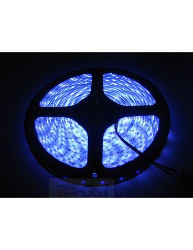 Лента LED SMD синий (изолир.) 10мм 60диодов/м 4,8вт/м.п. GTV LD-TLWNIE-00